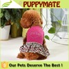 Dog dress dog clothes puppy apparel pet clothes in summer