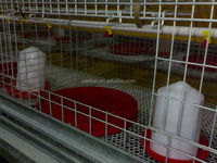 9LCDy-series H-type Multi-tier Pullet Chicken Cage System