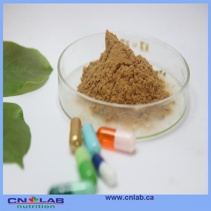 Good Quality Natural Songaria Cynomorium Herb Extract