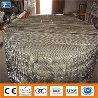 petroleum industry - Petrochemical packing Metal corrugated plate packing use for stripping services