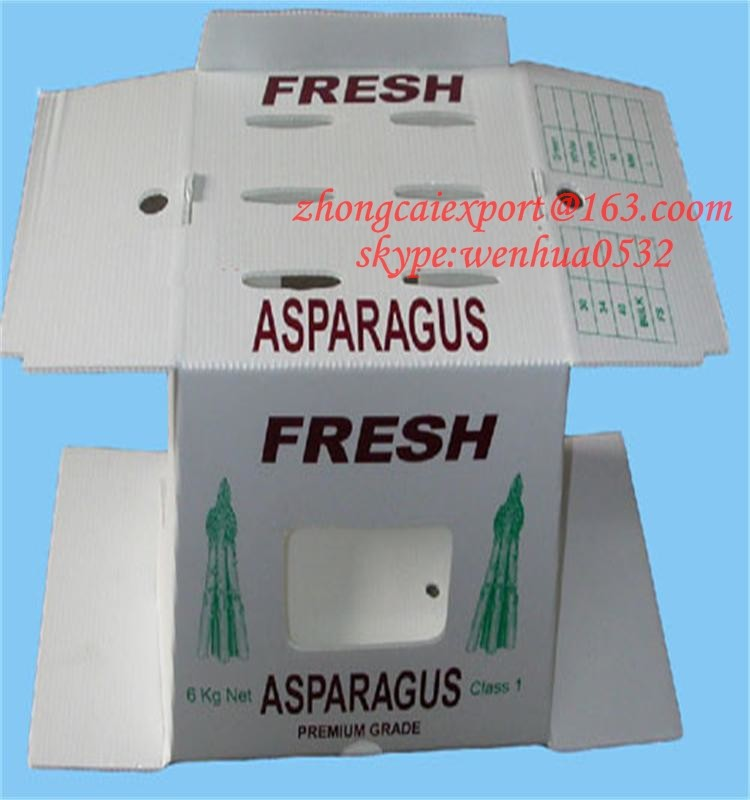 high quality cheap Plastic corrugated box fruit and vegetables plastic container
