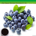 Factory supply pure natural and high quality acai extract