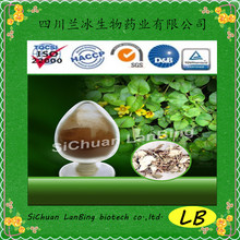 Natural Herbal Lysimachiae Extract Powder