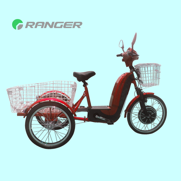 36V 350W Pedal electric cargo bike e tricycle (Big Happy)
