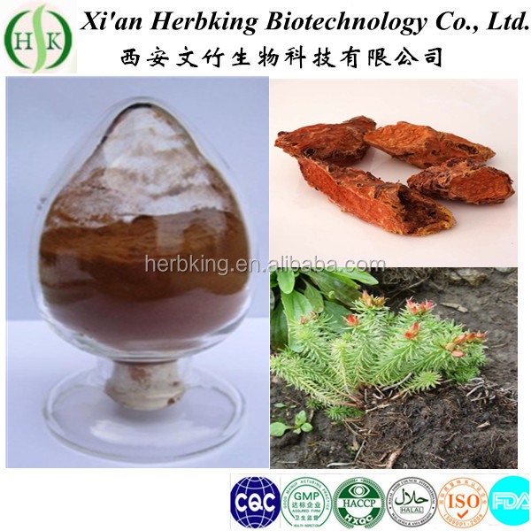wholesale best price natural Rhodiola rosea root powder rhodiola rosea p.e