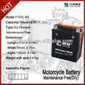 Maintenance Fre Lead Acid Battery 12V 6AH
