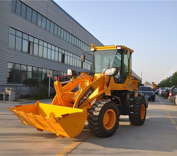 Widely Used China Bucket Wheel Loader For Sale