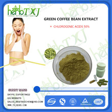 fat burner green coffee bean powder
