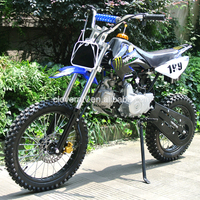 Chain Transmission 4 Stroke 110CC 125CC Dirt Bike with Monster Sticker