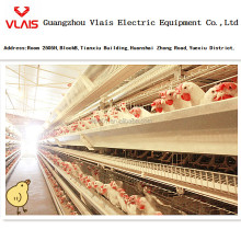 Guangzhou factory supply A type galvanized chicken poultry layer cage bird cage for sale