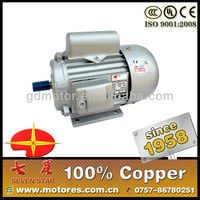Single phase copper scrap electric motor