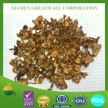 Dried fresh chanterelle mushroom with best price