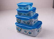 B002 4pcs food grade plastic container