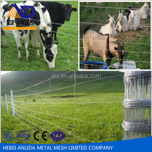 hebei joint venture company philippines electrogalvanizing Australian goat and sheep fence