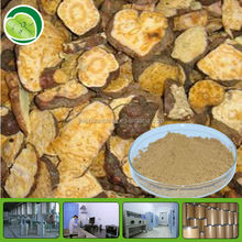 He Shou Wu P.E.Polygonum Multiflorum Extract 10:1 20:1