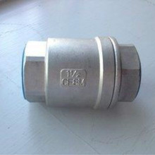 Stainless steel Vertical Lift Check Valves