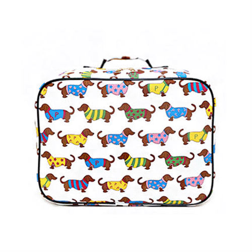 C1023 Korean fashion Luggage bag for Women