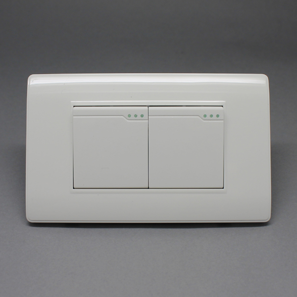 1-118B-03 INTERRUPTOR DOBLE DECORATIVO switches electric