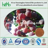 100% water soluble grape seed extract powder with 95% polyphenol 80% OPC