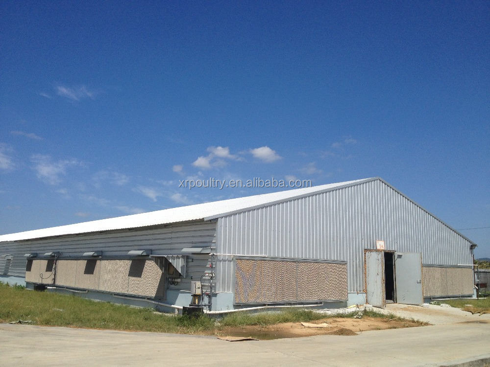 Steel structure broiler house