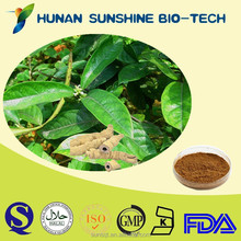 Sex Enhance Product Radix Morindae Officinalis Extract / Morinda Root Extract / Bacopin Extract