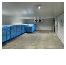 R404A meat industrial freezer cold storage room
