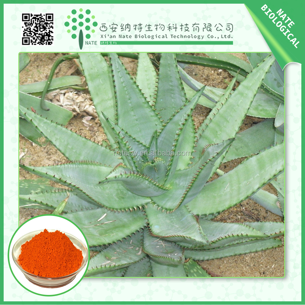 Chinese Products Wholesale herbal extract/aloe vera leaf powder