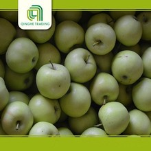 Hot selling fresh chinese green fruit organic green apples for wholesales