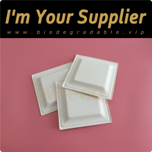 Bamboo biodegradable square plant pulp plate compostable sugarcane dispostable fiber straw eco-friendly bagasse paper plates