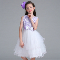 Korean Fashion Girl Style Name Brand Baby Girl Cotton Party Waer High Quality Dresses L326