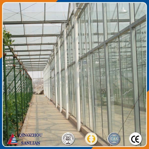 large Venlo glass agriculture greenhouse with cheap price
