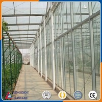 Large Venlo Glass Agriculture Greenhouse With