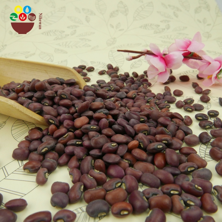 China supplier wholesale organic red cowpea bean price ton
