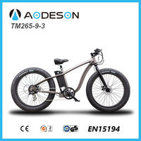 big power Fat tire Mountain electric bike/ snow electric bicycle/fatbike/fat mountain e bike TM265-9-3