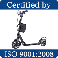 CCEZ motor wheel scooter