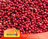 Pink Pepper Whole Red Peppercorn Schinus terebinthifolius - import export of spices