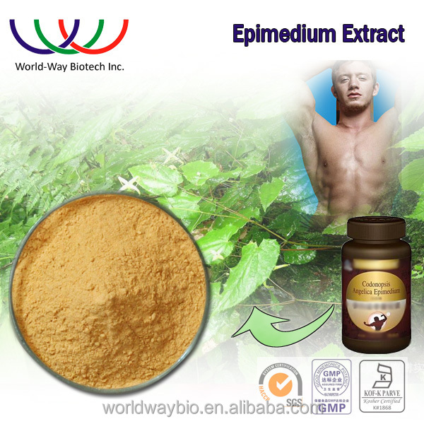Promote sexual function herbal extract Epimedium sagittatum extract , pharmaceutical grade epimedium extract pure icariin powder