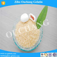 High Purity Unflavored Food Additive Gelatin Powder