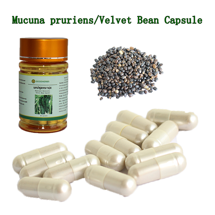 wholesale velvet bean capsule penis strong herbal medicine to enlarge penis