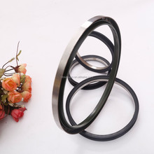Double Lip Oil Seal, Rotary Shaft Metric Oil Seal For Hydraulic Pump