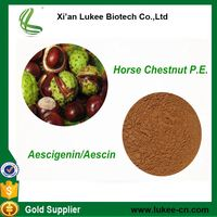 Best Price liquid horse chestnut extract 20%,40% Aescin/Aescigenin