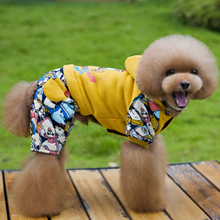 Custom Autumn and Winter New Teddy Dog Four-legged Outdoor Fashion Cotton Dog Coat