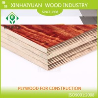 China plywood factory manufacture cheep price 4x8 plywood canada Pine plywood/poplar/eucalyptus wood faced plywood prices