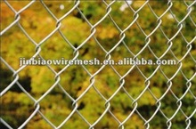 chain link fencing birds cage
