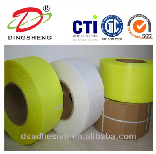 Factory Wholesale Plastic PP/PET Packing Strap
