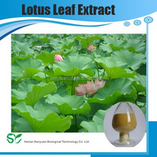 100% Natural flavonoids plant extract lotus leaf extract for loss weight