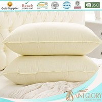 Home Textile Wash Duck Feather Pillow