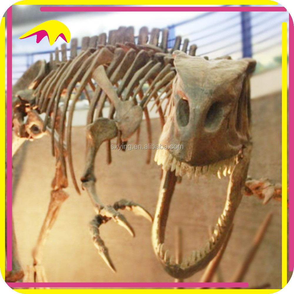 KANO4967 Museum Exhibition Life Size Vvid Dinosaur Scale Model