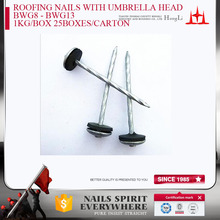 BWG8-BWG13 H.D.G ROOFING NAILS UMBRELLA HEAD WITH RUBBER WASHERS