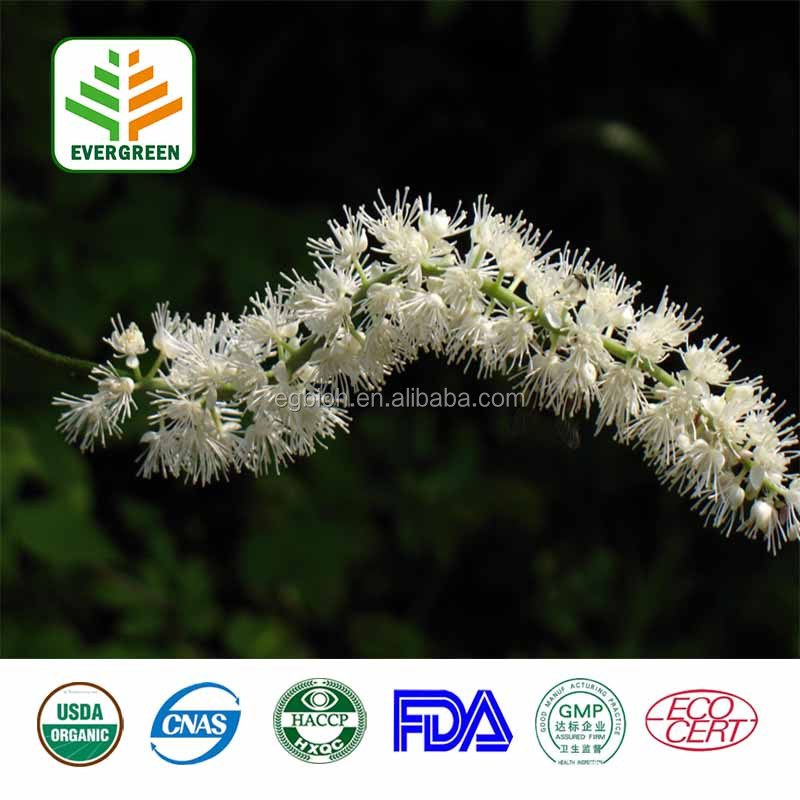 Chinese Medcine Black Cohosh Root Extract,Black Cohosh Extract